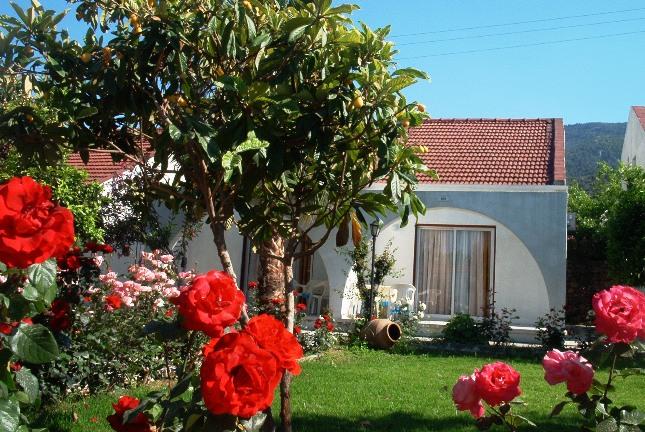 Rose-Gardens3